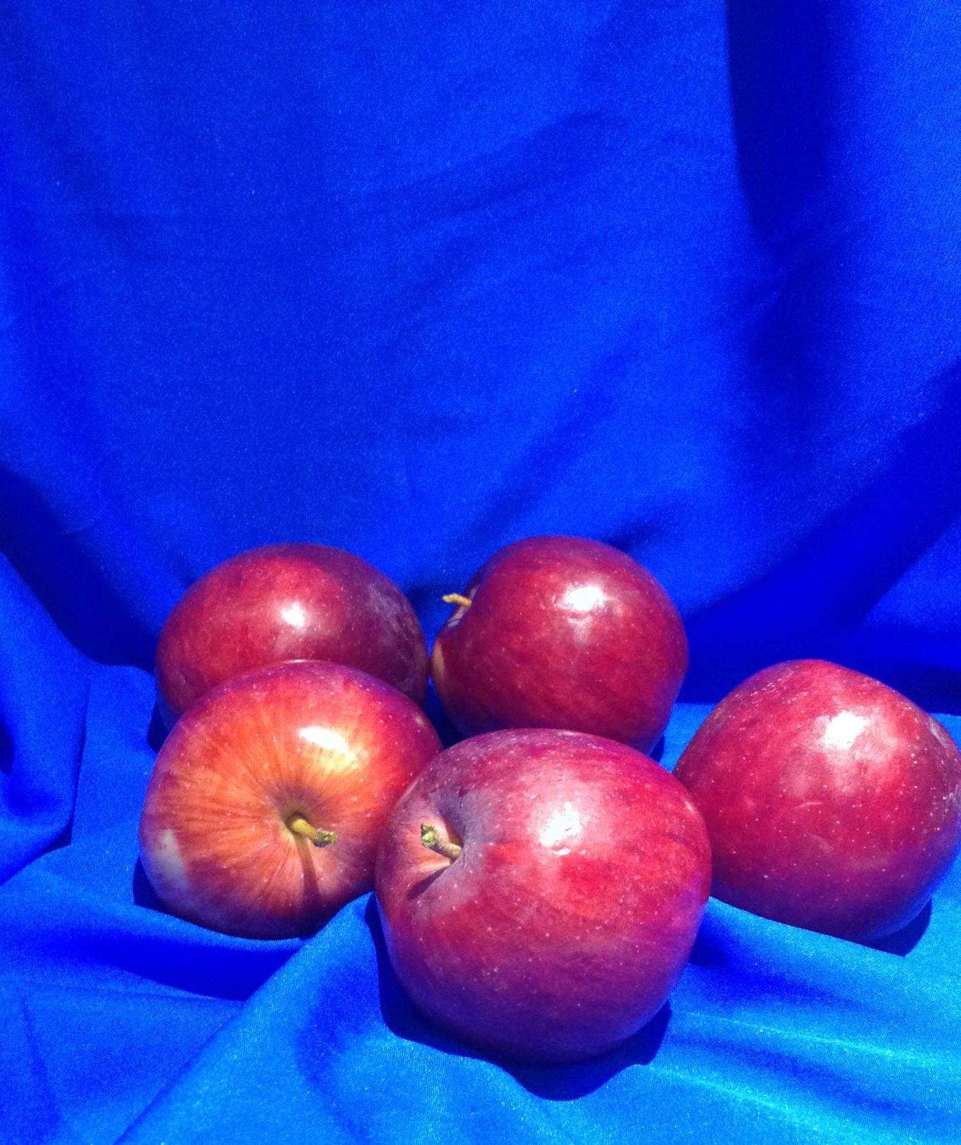 Apples on Blue Master.jpg